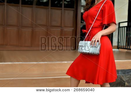 Fashionable Woman In Red Dress Holding Leather Snakeskin Python Bag. Close Up Of The Purse In Hands