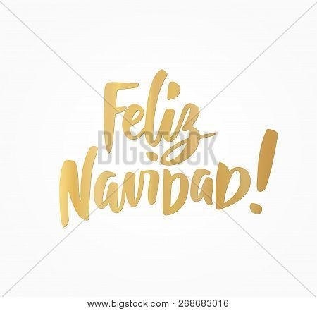 Feliz Navidad, Merry Christmas spanish text. Great for Christmas cards, gift tags and labels. poster