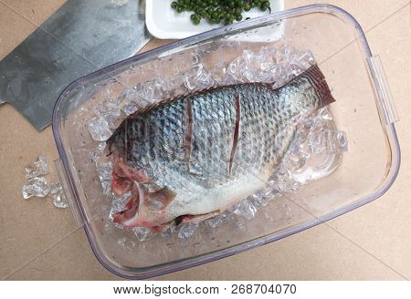 Raw Tilapia Fish In Box For Cooking With Herbs, Thai Food