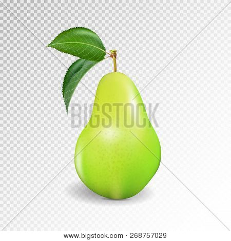 Pear Realistic. Vector 10eps. Green Pear, Punching Bag, Punching Ball, Punchbag, Punchball. 3d Illus