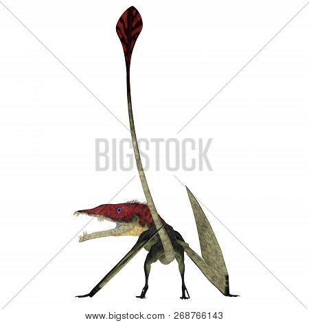 Eudimorphodon Pterosaur Tail 3d Illustration - Eudimorphodon Was A Carnivorous Pterosaur Bird That L