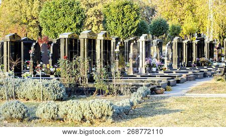 New Cemetery Alley With Marble Tombs In Row