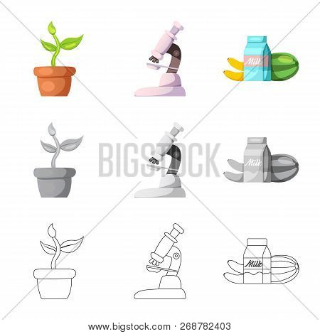 Vector Design Of  And  Symbol. Collection Of  And  Vector Icon For Stock.