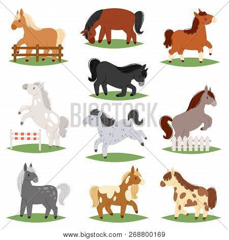 Cartoon Horse Vector Cute Animal Of Horse-breeding Or Kids Equestrian And Horsey Or Equine Stallion