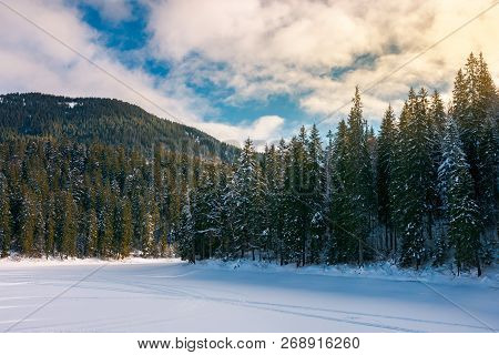 Beautiful Winter Scenery In Mountains. Frozen Lake Cowered With Snow. Spruce Trees On The Shore. Won