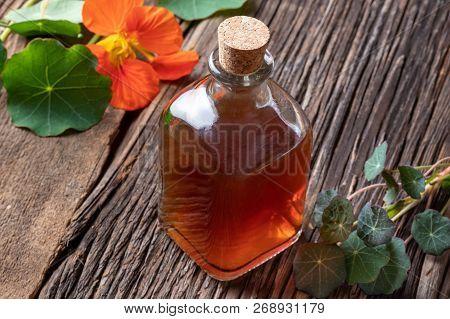 A Bottle Of Nasturtium Tincture With Fresh Tropaeolum Majus Leaves And Flowers