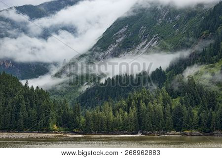 Beautiful Mountain Forest Scene With Lots Of Mist In The Mountains, Water In The Foreground