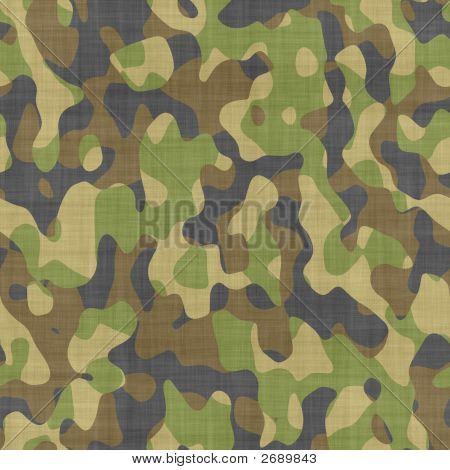 Close Up Camoflage