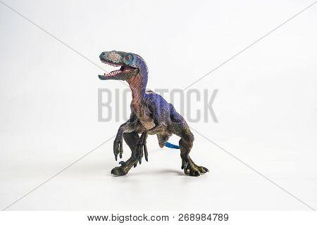 Dinosaur , Velociraptor On White Background