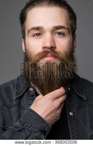 Close Up Of Man Touch His Long Beard And Mustache Isolated On Gray Background