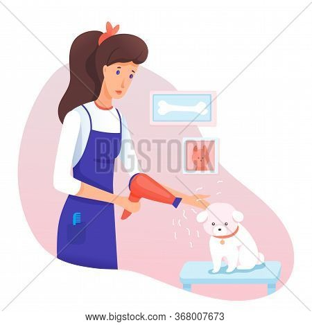 Dog Grooming Service In Veterinary Salon Cartoon. Female Pet Owner, Groomer Taking Care Of Canine, B