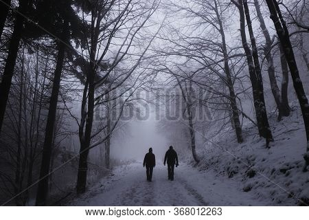 Beautiful Couple Walking Along An Unmaintained Forest Path In The White Darkness. Two People Go Into