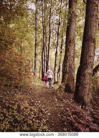 Family In Autumn Summer Forest, Back View. Woman And Little Girl Walk Away On Path In Woods. Child W