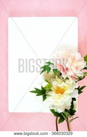 Pink And White Peony Flowers Decorated Border On Modern Pink Textured Background