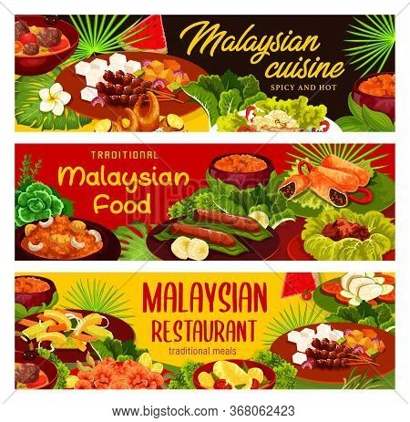Malaysian Cuisine Restaurant Meals. Dishes With Stewed Meat, Fish And Seafood Products, Marinaded Ve