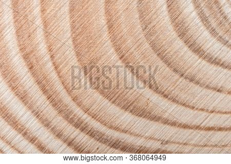 Wooden Tree Cut Surface With Organic Tree Rings - Close-up View