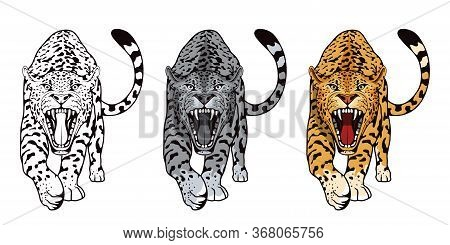Set Of Angry, Leopard. Stands Leopard. Predator Animal. Leopard Mascot Color Logo. Animal Tattoo. An