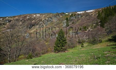 View Of Velky Kotel Valley In Summer Jeseniky Mountains, Czech Republic. Hillside With Prominent Roc