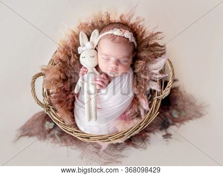 Adorable newborn girl resting in basket with knitted toy