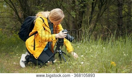 Female Nature Photographer Making Macro Photography Using Camera On Tripod Kneeled In Spring Woods