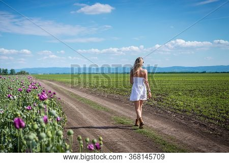 Woman Walking In Fields In Nature. Happy People Lifestyle. Woman Walking Through Fields In Nature. N
