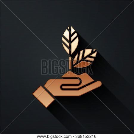 Gold Plant In Hand Of Environmental Protection Icon Isolated On Black Background. Seed And Seedling.