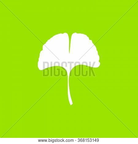 Ginkgo Or Gingko Biloba Leaf Icon. Nature Botanical Vector Illustration, Herbal Medicine Graphic In