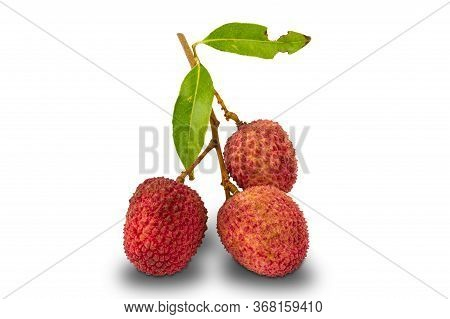 Group Of Lychee , Litchi Chinensis, With Leaves On White Background With Clipping Path