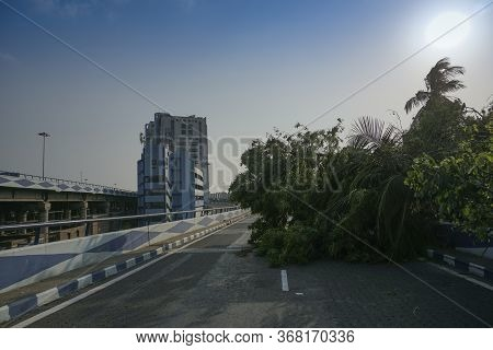 Howrah, West Bengal, India - 23rd May 2020 : Super Cyclone Amphan Uprooted Tree Which Fell And Block