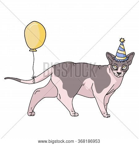 Cute Cartoon Sphynx Cat With Party Hat Vector Clipart. Pedigree Exotic Breed For Cat Lovers. Purebre