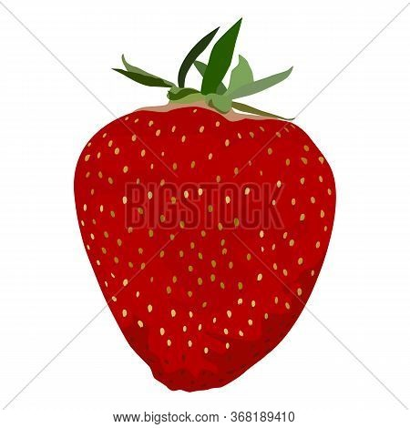 Ripe Fresh Strawberry, Vector Flat Illustration On White Background. Red Sweet Strawberry Fruit.