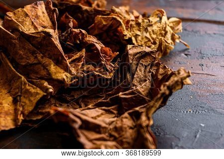 Dry Leafs Tobacco Close Up Nicotiana Tabacum And Tobacco Leaves On Old Wood Planks Table Dark Side V