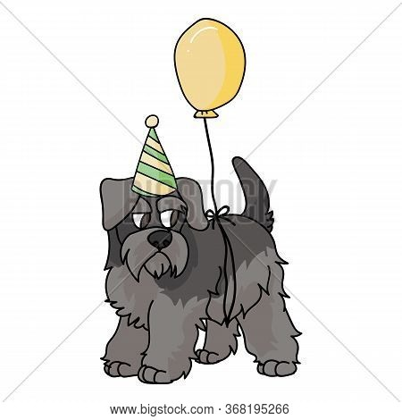Cute Cartoon Schnauzer Puppy With Party Hat Vector Clipart. Pedigree Kennel Doggie Breed. Purebred D