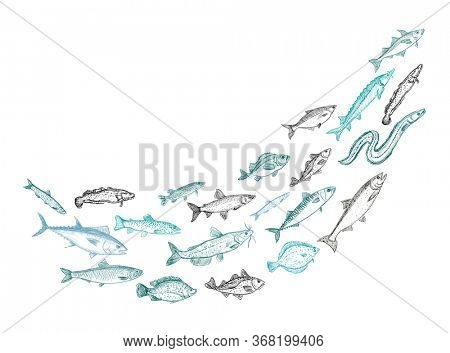 Shoaling fish graphic illustration, schooling fish swirl, rasterized version