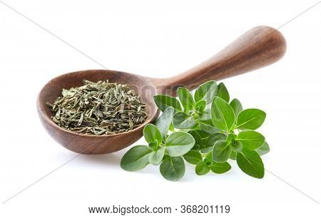 Fresh thyme with dry thyme leaves on white background