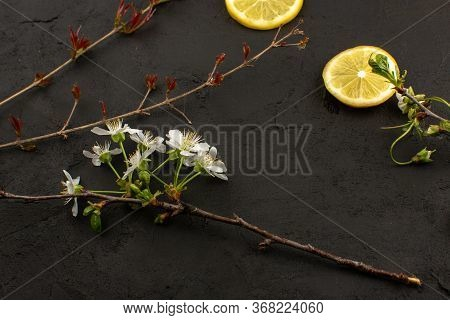 A Top View Lemon Slices Sour Mellow Juicy Along With White Flowers On The Dark Floor