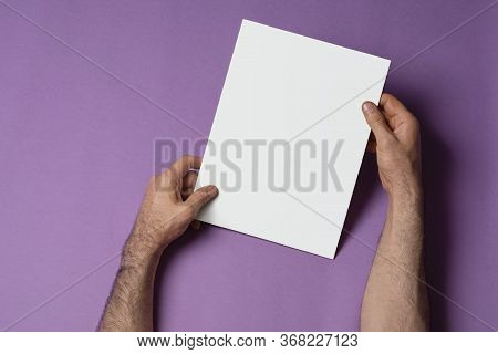 Male Hands Holding A Closed Tri-fold Catalog With Blank Cover On Purple Background, Mock-up Series T