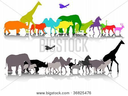 big set of safari animal wildlife