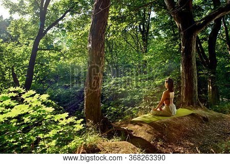 Shot Of One Young Asian Women Doing Yoga In The Green Sunset Forest. Fitness Woman Sitting On The Ex