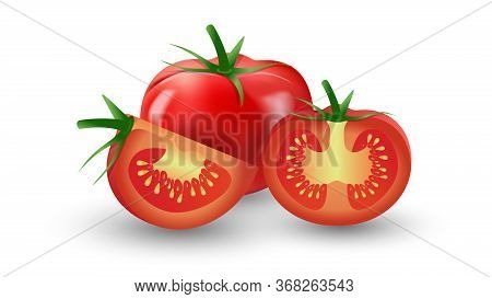 Ripe Juicy Natural Tomato. Appetizing Chopped Tomato. Half. Realistic Vector Illustration. For Promo