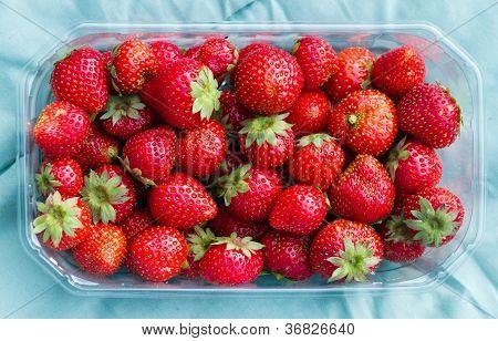 Strawberries In Plastic Basket