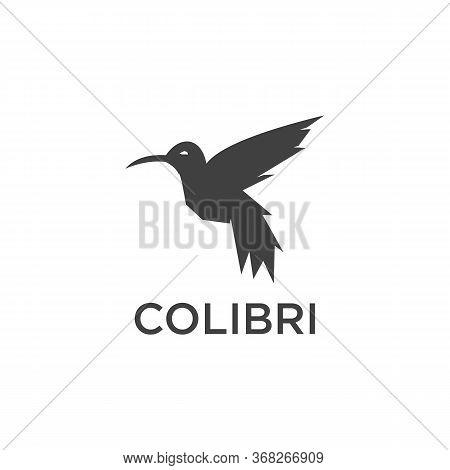 Colibri Logo Vector And Animal, Bird, Abstract
