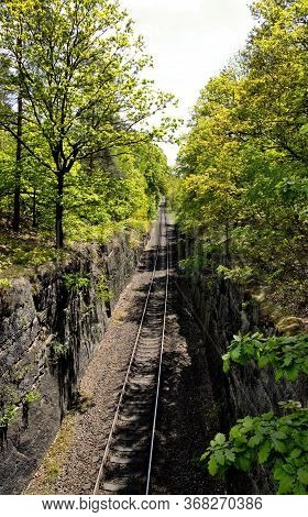 Railway Corridor Bordered By A Concrete Wall And A Mature Forest, Sunny Day