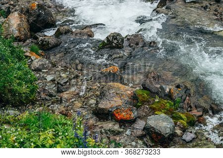 Wonderful Scenic Background With Rich Flora Near Mountain River. Highland Backdrop With Fresh Greene