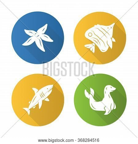 Sea Animals Flat Design Long Shadow Glyph Icons Set. Tarfish, Butterflyfish, Shark, Seal. Ocean Unde