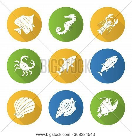Marine Animals Flat Design Long Shadow Glyph Icons Set. Swimming Shark, Anglerfish, Butterflyfish. U