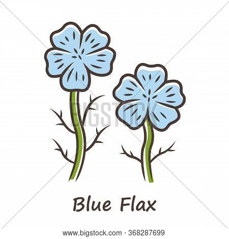 Blue Flax Plant Color Icon. Linen Wild Flower With Name Inscription. Spring Blossom. Blooming Linum