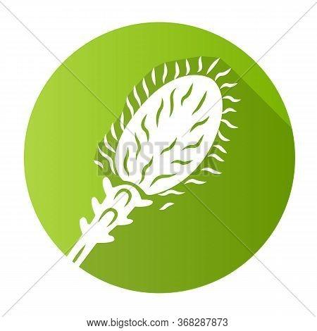 Liatris Green Flat Design Long Shadow Glyph Icon. Blazing Star Blooming Flower. Dwarf Gayfeather Gar