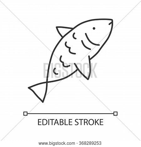 Raw Fish Linear Icon. Saltwater Animal With Fins, Gills And Scales Thin Line Illustration. Natural S