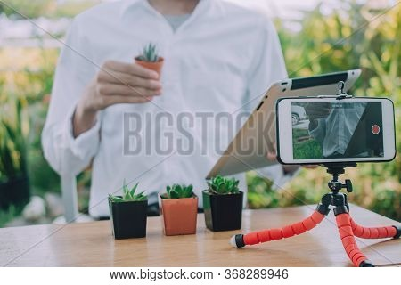 New Normal Working At Home Online V Logger Training For Cactus Planting And Home Gardening